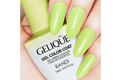 Bandi Gelique Gel Color (Greenish Apple)